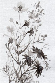 Black&white Flowers original Ink by VerbruggeWatercolor on Etsy