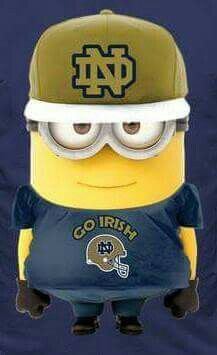 Go Irish my favorite team that's a great picture