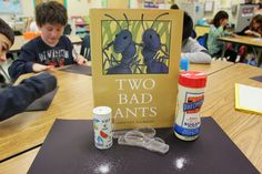 Fun inferencing lesson using the book Two Bad Ants. This book has great places to stop and use schema to make an inference. A fun science tie-in: have students compare sugar and salt using a hand lens so they can see that both are made from tiny crystals.