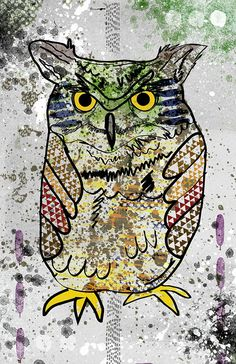 Owl Poster - Great for a Kids Room / Zoo Animal / Cute / Bird / Pop Art. Owl Poster - Hand drawn illustration combined with texture,color, and other graphic elements. Printed using archival ink and paper. Size is 11x17 in. Signed by me. Colors are vibrant and looks amazing in print.