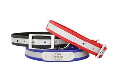Our reflective collars you know and love are now made with a new super soft strap! Check out the best waterproof, odor-resistant and reflective collar now! Personalized Dog Collars, Dog Safety, Dog Id, Dog Names, Your Dog, Pup, Check, Blog, Dog Baby