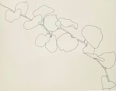 marottahour:  Ellsworth Kelly—Briar (1961), Wadsworth Atheneum Museum of Art, Hartford