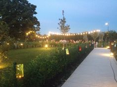 Borgo Cavaliera - cena in giardino