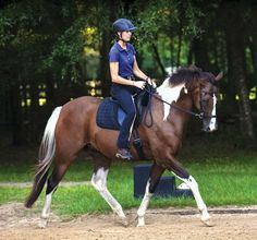 The Bitless Dressage Debate--Karen Rohlf rides her Holsteiner/Paint gelding, Ovation, in a simple side-pull-type bridle. - See more at: http://dressagetoday.com/article/bitless-bridle-debate-28386#sthash.nhqIeZdC.dpuf