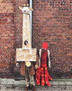 """Els Lambrechts on Instagram: """"Mr. giraf viel in de prijzen 🦒 #prinscarnaval2019 🏆🥳"""" Instagram, Carnival"""