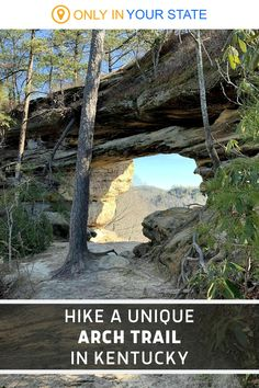This easy to moderate hiking trail in Kentucky offers beautiful rock formations, natural arches, and rocky steps. It's a fun day trip and suitable for beginner hikers. Rocky Steps, Backpacking Trips, Red River Gorge, Hidden Beach, Walk In The Woods, Rock Formations, Hiking Trails, Day Trip, Vacation Ideas