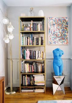 Bookcase! (Ignore the random naked blue woman...)