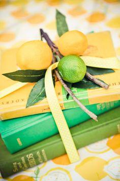 Lemon & Lime party  |  heather lynn photographie