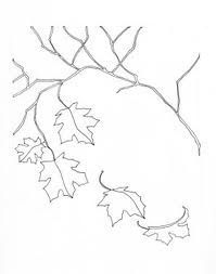 Ash Leaf Pattern  Ideas For The House    Leaves