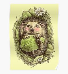 You can't beat a hedgehog! Little hedgehog by ELINA CHERIANIDOU This was to… You can't beat a hedgehog! Little hedgehog. Colouring Pages, Adult Coloring Pages, Coloring Books, Coloring For Adults, Animal Drawings, Pencil Drawings, Art Drawings, Sketches Of Animals, Awesome Drawings