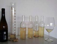 La libreta del enólogo de Finca Viladellops. Aromas secundarios (II) ¿Qué tipos de aromas secundarios se generan en la fermentación?