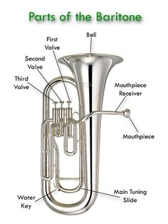 Brass Instruments - Welcome to the Glades Middle School Bands Website! Music Class, Music Education, High School Band, Middle School, Trombone, Instruments Of The Orchestra, Band Website, Band Rooms, Brass Instrument