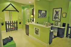 Paws Up for Pets: Salon owner goes to the dogs with grooming biz – The Coastal Star Dog Grooming Shop, Dog Grooming Salons, Dog Grooming Business, Dog Spa, Dog Hotel, Dog Rooms, Dog Boutique, Dog Daycare, Wall Shelving