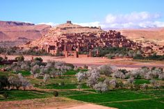 Marrakech to the desert for just 150 euros per person