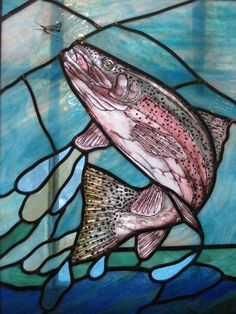 Rainbow Trout Window
