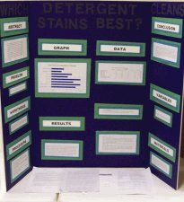 Photograph of Savannah's Science Project