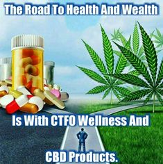 Business Marketing, Online Marketing, Cdb Oil, Moringa Oil, Oil News, Cbd Hemp Oil, Starting Your Own Business, Business Opportunities, Pure Products