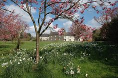 Knowles Farm House, Pembrokeshire. An organic farmhouse in the greenest county in Britain. Comfy old fashioned bedrooms have glorious views. The food is local and delicious http://www.organicholidays.com/at/133.htm