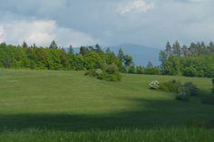 Slovacchia -Sliac Golf Courses