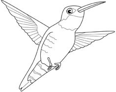 Risultati immagini per disegno colibri