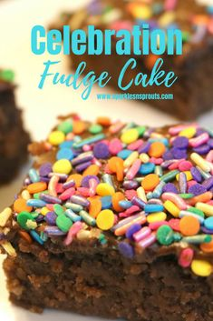 Celebration Fudge Ca