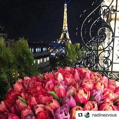 The pink of the flowers and the Iron Lady proudly twinkling in the background! My #parispicoftheday #merci #pariscartepostale #pariscityvision #parisamour #paris #parisvacation #parisian #parisbynight #parisphoto #photo #instagramphoto #blogging #travelphotos #eiffeltower #fleurs #Repost @nadinezvous with @repostapp  Bonne soirée les amis  #parisisalwaysagoodidea