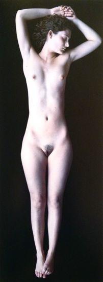 Carla van de Puttelaar - Artists - Danziger Gallery
