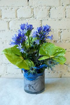 A little sample of some of the reception vases being sent out this morning. We decided to go with a blue and green colour scheme this week for our clients. The flowers include blue agapanthus, purple hydrangea, molucella, gladiola, green anthuriums and blue eringium. #reidsflorists #corporateflowers