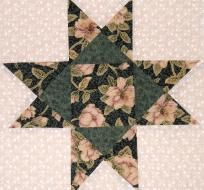 12 OHIO STAR QUILT FABRIC VINTAGE ROSE ON GREEN OHIO STAR SHIP FREE RARE FREE PATTERNS