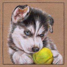 siberian husky canvas | husky s gallery on deviantart http sooper husky deviantart com