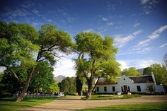 Molenvliet Wine and Guest Estate - Latest Wedding and Events Best Wedding Venues, Wedding Events, Wedding Ceremony, Destination Wedding, Weddings, Wedding Gallery, Event Venues, Perfect Wedding, Wedding Inspiration