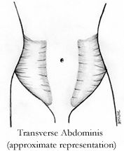 Postpartum Abdominal Reconditioning