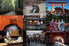 KYOTO - Arashiyama con la famosa foresta di bamboo e il parco delle scimmie, il santuario Fushimi Inari Taisha dalle migliaia di torii.
