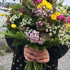 #markblomster #norge #sommer#wildflowers#summer#norway