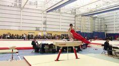Zachary Clay - Pommel Horse - Senior Final - 2015 Elite Canada