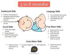 baby-development-3-to-6-months.jpg (1355×1100)