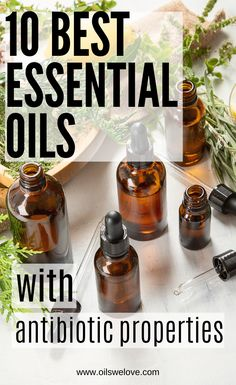 most effective all-natural antibiotic, the best means to create as well as enhance our body immune system and also fight versus virus Thyme Essential Oil Uses, Essential Oil Bottles, Tea Tree Essential Oil, Best Essential Oils, Rose Geranium Oil, Antibacterial Essential Oils, Garlic Supplements, Vetiver Oil, Easential Oils