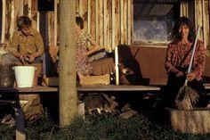 Evening, Fox River, West Coast. 1979. New Zealand Landscape, Landscape Structure, Artistic Photography, West Coast, Robin, Photographers, Lens, Fox, River