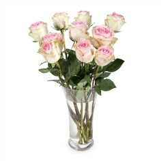 Make someone's day by ordering a bunch of fresh cut flowers online. Browse our beautiful collection of flowers and plants. Cut Flowers, Bedside, Mothers, Roses, Day, Plants, Pink, Rose, Planters