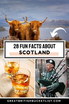 Did you know that the national animal of Scotland is a unicorn? No? Then here are 28 other fun facts about Scotland that will blow your mind. #Scotland #ScotlandFacts #ScottishFacts #ScottishTrivia #ScotlandTrivia #FactsAboutScotland #FunFactsAboutScotland #TriviaScotland #TravelScotland #UnitedKingdom #GreatBritain #GreatBritishBucketList Scotland Travel Guide, Europe Travel Tips, Travel Guides, Travel Destinations, Best Places To Travel, Cool Places To Visit, Scotlands National Animal, Scottish Castles, Amazing Adventures