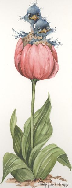 Two in a Tulip 13 x 6 lithograph