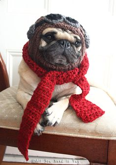 The+Red+Baron++Dog+Hat+and+Scarf+Set+by+AllYouNeedIsPugShop,+$38.00