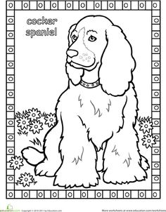 Worksheets: Cocker Spaniel Coloring Page