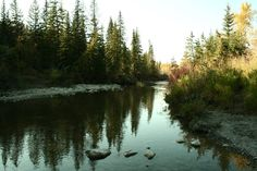 """FISH Creek Park, the largest natural park is located 5 min from my home.  Hikers, walkers, explorers experience the park's 8500 year human history. """"The Fish Creek Valley is where generations of native communities grew and thrived for thousands of years, where the first Europeans in Calgary settled and where the city's first industrial development was established,"""" """"It's a wonderfully preserved area sitting right in the middle of Calgary."""""""