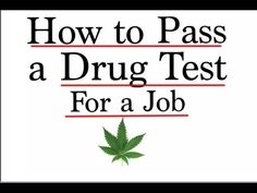 This Video explains how to pass a drug test for a job. Step by step instructions on how to pass a urine test. Passing a drug test for marijuana.    My Name is Joseph Trimmer. I Majored in Economics. Im Part of Gen Y, I'm a nerd/geek and proud of it. I encourage people to speak their mind loudly.  Please SUBSCRIBE for more great videos https://www.y...