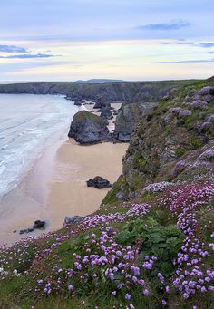 around the cliffs of Bedruthan Steps in Cornwall