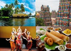 South India is one of the wonderful destinations in India to explore Temples, Wildlife, Culture, History, Nature, Monuments and Delicacies. It includes various places like Kerala, Tamilnadu, Karnataka and Andhra Pradesh. We have some suggested South India Tour Packages from 5 Days to 20 Days. Whether you can choose or create your itinerary yourself according to your interest.