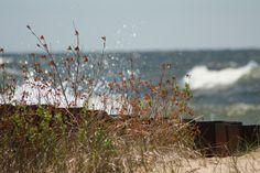 A breakwall along Michigan's shoreline, dancing in the sun