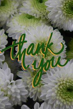 Many thanks to our wonderful Pinterest friends for all of your saves, pins, support, great information and kindness. You are all the BEST and so appreciated. Thank you!