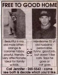 """Funny newspaper article: """"He says he goes or the cat goes"""" so """"come see both & decide which you'd like""""!"""